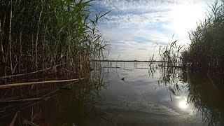 РЫБАЛКА КАК В ДЕТСТВЕ НА ПОПЛАВОК. Ловля на поплавочную удочку