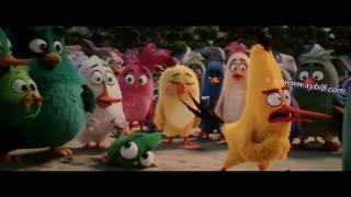 """""""Laidies Get Busy!"""" [Dirty Joke]-The Angry Birds Movie. (HD-CAM)"""
