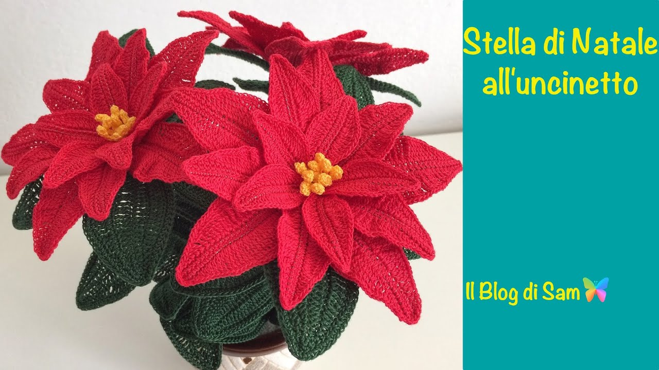 Prezzo Stella Di Natale Pianta.Explanation Of Crochet Poinsettia