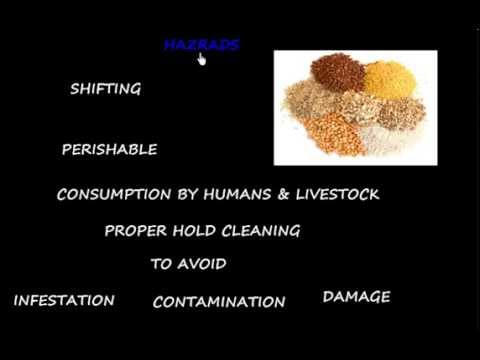 Cargo work _ Basic Concepts of Grain loading