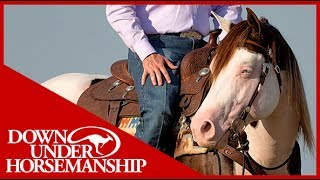 Clinton Anderson Presents: Titan a Legend in the Making, Lesson 13, Part 2 - Downunder Horsemanship