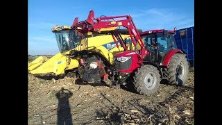 Żniwa kukurydziane New Holland cx5080 & Tym T1054