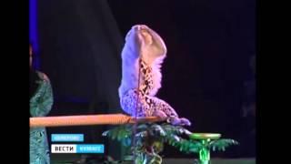 «Цирковая полундра» в Кемерово