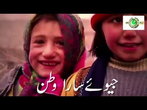 Pak Sarzameen Party Official Song