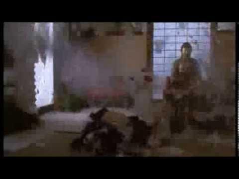 Steven Seagal : Fight Scene Hard to Kill