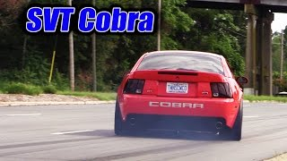 Mustangs leaving SVT Cobra Club ★ Parkway Ford Show 2015 (1 of 3)