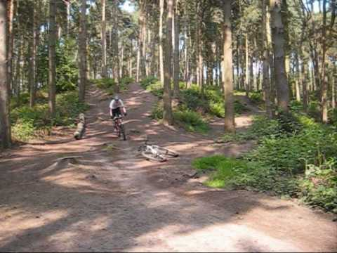 how to get to delamere forest