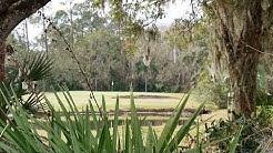 Tarpon Woods - East Lake, FL - Traveling Golfer