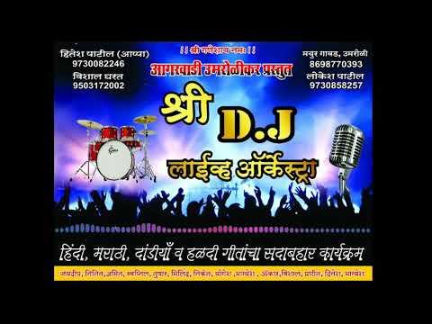 shree-dj-live-orchestra-aai-tuz-deul-band-music-8698770393