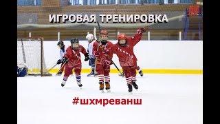 Игровая тренировка для хоккеистов 2008-10 г/р.