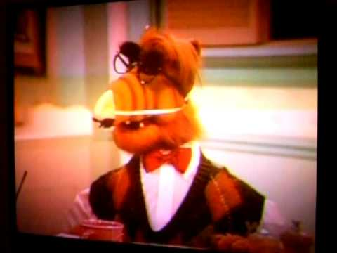 alf and his halloween costume 1987 youtube - Alf Halloween Episode