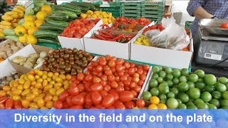 Diversity in the field and on the plate - The EU-project DIVERSIFOOD