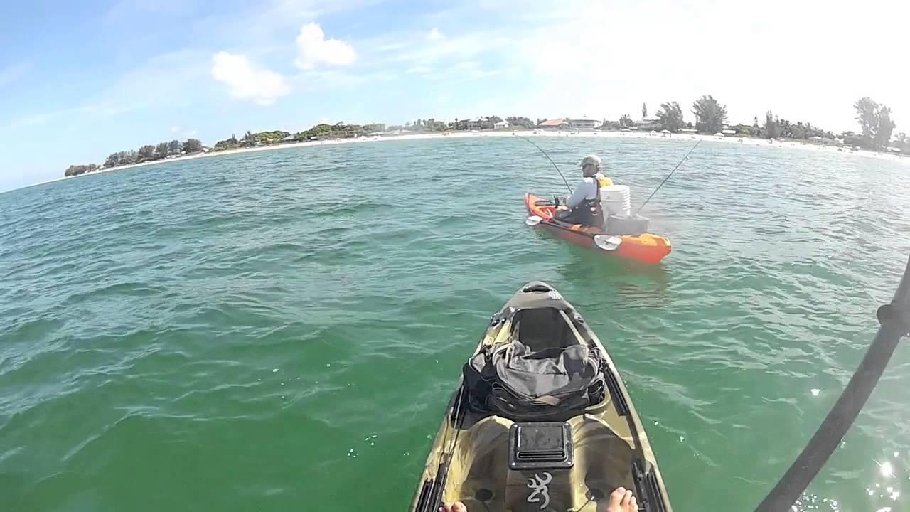 Kayak tarpon fishing in anna maria island fl 85lb for Anna maria island fishing report