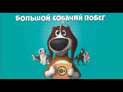 Кадры из фильма Большой собачий побег