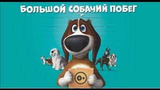 Большой собачий побег: ролик 20 сек