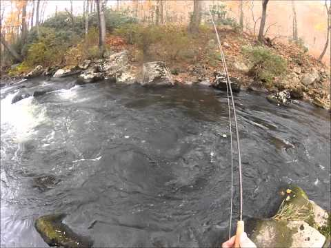 Scud Fishing on the Savage River