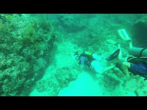 Scuba Diving - Key Largo - Winch Hole