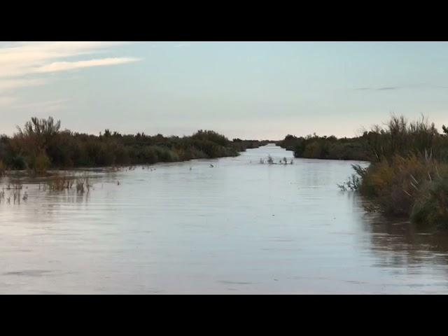 Producto de las lluvias, creció el Atuel en Mendoza. Puente Carmensa.