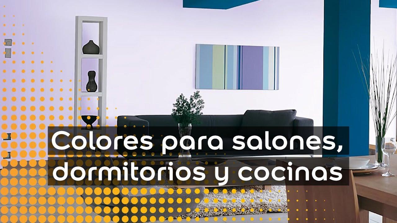 Colores Para Salones Dormitorios Y Cocinas Procolor Youtube