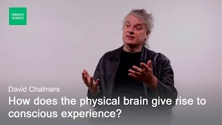 Video Hard Problem of Consciousness — David Chalmers download MP3, 3GP, MP4, WEBM, AVI, FLV Desember 2017