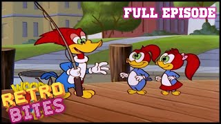 Swiss Family Buzzard | Woody Woodpecker | Full Episodes