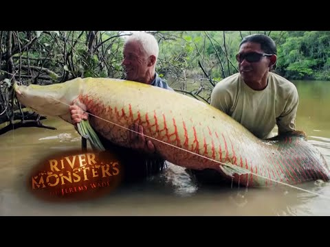 Catching a Giant Arapaima on a Fly - River Monsters