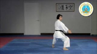 Heian Shodan - International Hayashi-Ha Shito-Ryu