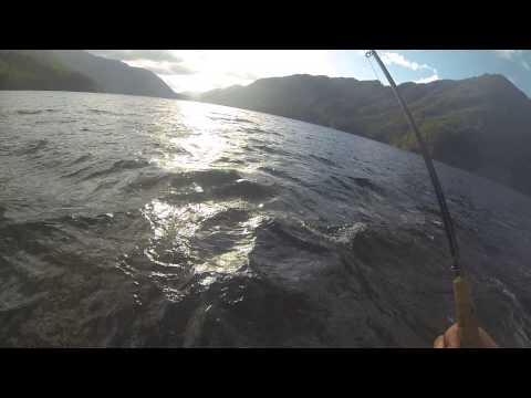 Lake Crescent Beardslee - Fly Fishing