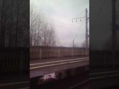 Электропоезд. Любань- Санкт-Петербург(Главный)