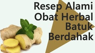 Resep Alami Obat Herbal Batuk Berdahak