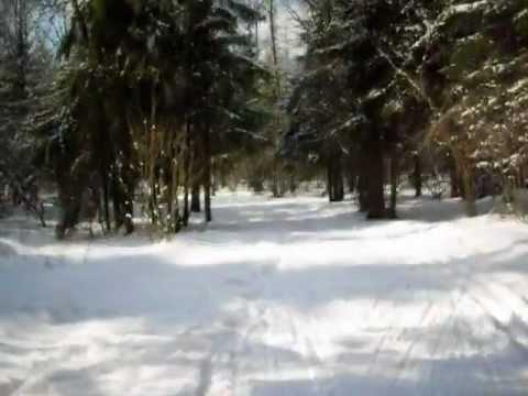 Лыжная трасса в Красногорске
