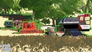 ☀️ Wielkie Żniwa w Niewielkiej Wsi na 3 KOMBAJNY ⚡️ Rolnicy Mechanicy ⭐️ Farming Simulator 19