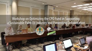 Optimizing the Crude Palm Oil (CPO) Fund in Supporting a Sustainable Palm Oil Industry
