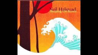 Neil Halstead - Driving With Bert