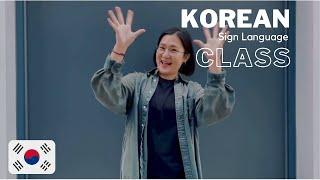 Learn Korea Sign Language with JiYoung!   KSL Online Class 한국 수화 언어