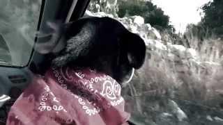 Walter Wj Spray-Non mi abbandonare mai (OFFICIAL VIDEO) BY LUCA POLITO