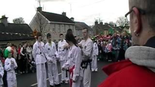 Midlands Taekwon-Do at St. Patricks day parade Clonmellon 17-3-2012 (Video3)