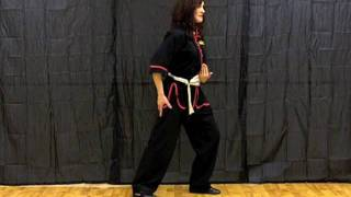 How to Do a Tai Chi Twist Step - Brush Knee Twist Step - Ao Bu from www.internalgardens.com