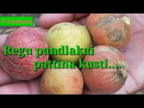 Gurthukostunnayi song with English lyrics