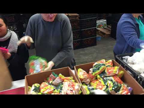 One minute of Grey Bears nutritional delivery bliss