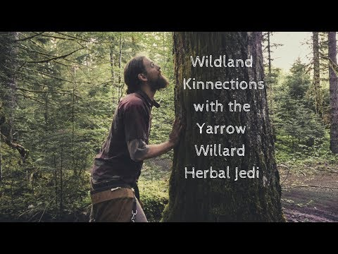Wildland Kinnections Plant Walk with the Herbal Jedi