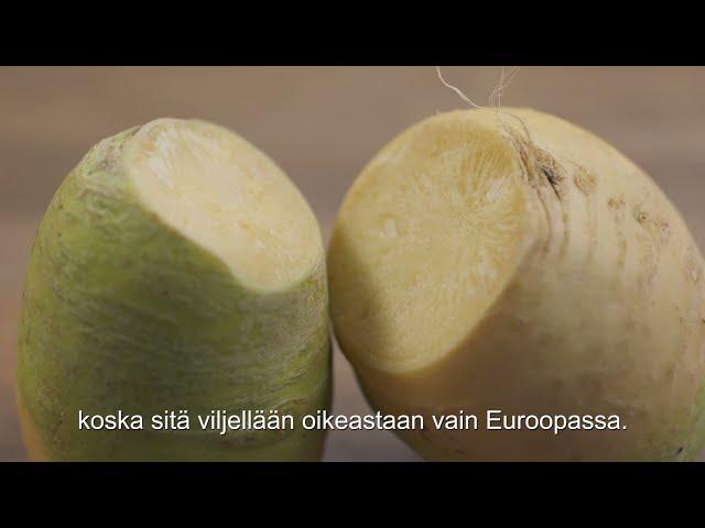 Thumbnail of video called Mitä kasvikset ovat?
