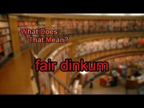 What does fair dinkum mean?