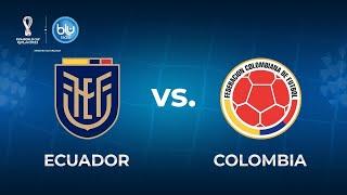 Ecuador vs Colombia en vivo – Eliminatorias Sudamericanas Qatar 2022