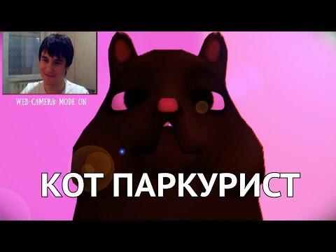 Симулятор Кота Паркуриста