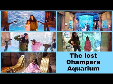 The Lost Champers Aquarium/Dubai/Atlantis