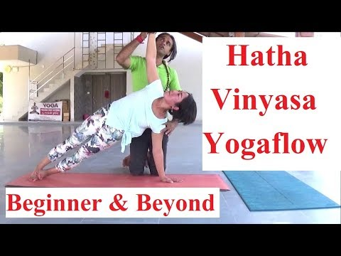 hatha vinyasa yoga for daily practice  beginner and