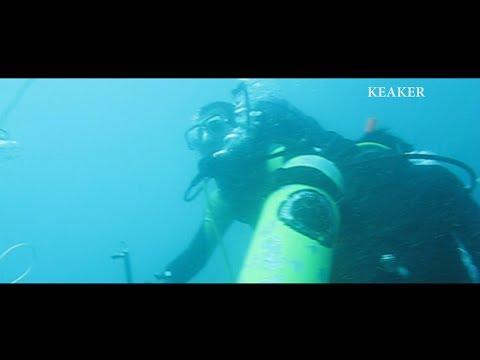 Mengungkap Bawah Air Karimunjawa (Indonesia Underwater)