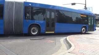 Orlando Lynx Buses 8-8-15