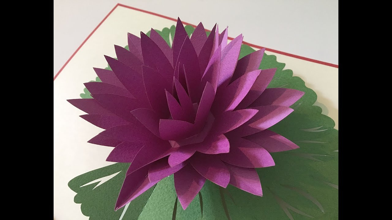 Fl012 3d Laser Pop Up Card Flower Lotus Water Lily Youtube
